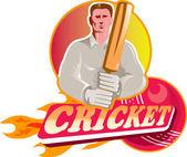 Крикет бьющего игрока с мячом и bat вид спереди — Стоковое фото