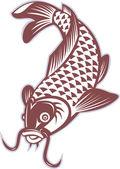 Koi carp swimming down — Stock Photo
