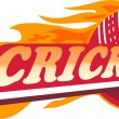 Cricket sports ball flames — Stock Photo #6995922