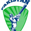 Stock Photo: Cricket player batsmbatting retro Pakistan