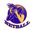 Netball player holding passing ball - Stock Photo