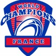 Rugby ball France World Champions — Stock Photo
