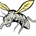 Cartoon mosquito flying — Stock Photo