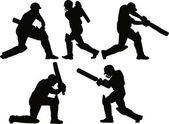 板球运动员的击球手击球剪影 — 图库照片