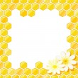 Honeycomb Frame with Flower — Stock Vector #7357460