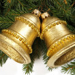 Golden bells — Stock Photo