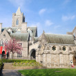 Christ Church Cathedral in Dublin — Stock Photo #7798014