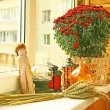 Stock Photo: Autumn registration of balcony