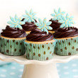 Chocolate cupcakes — Stock Photo #6941883