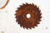 The rusty sircular saw — Stock Photo
