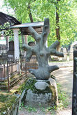Tombstone between trees — Stock Photo