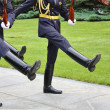 Stock Photo: Ideal ceremonial step