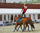 Horseman's training — Stock Photo