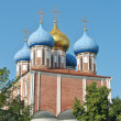 Golden domes of the Ryazan Kremlin — Stock Photo