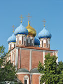 Golden domes of the Ryazan Kremlin — Стоковое фото