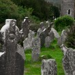 Stock Photo: graveyard