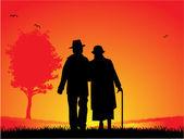 äldre gift par - en promenad i parken — Stockvektor