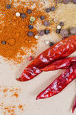 Peppers spices — Stock Photo