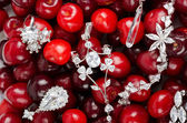 Jewels at cherries — Photo