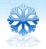 Shiny snowflake icon — Stockvektor