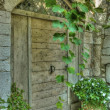 Foto Stock: Vintage wooden door