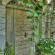 Vintage wooden door — Stockfoto #7938759