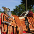 Parade Saddle — Foto de Stock