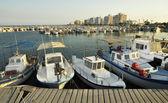 Barche di pescatori ormeggiate nel porto, larnaca, cipro — Foto Stock