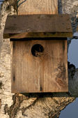 Wood Birdhouse — Stock Photo