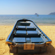 Stock Photo: Blue rowing boat on shore