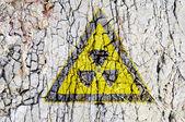Radioactivity symbol on abstract rough grunge brick wall background — Stock Photo