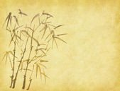 Silhouette of branches of a bamboo on paper background — 图库照片
