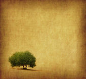 Tree with old grunge antique paper texture — Stock Photo