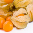 Stock Photo: Fresh physalis fruits