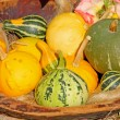 Decorative gourd — Stock Photo