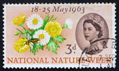 Postage stamp USA 1963 Buttercups, Daisies and Bee — Stock Photo