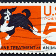 Stock Photo: Postage stamp US1966 Humane treatment of all animals