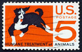 Postage stamp USA 1966 Humane treatment of all animals — Stock Photo