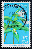 Postage stamp USA 1979 Persistent Trillium — Stock Photo