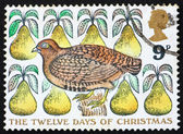 Postage stamp GB 1977 Partridge in a Pear Tree — Stock Photo