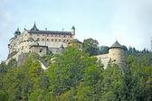 Hohenwerfen Castle — Zdjęcie stockowe