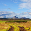 Iceland landscapes — Stock Photo