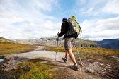 Hike in Norway — Стоковое фото