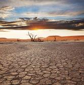 死谷 — 图库照片