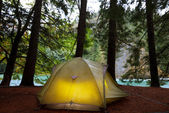 Tent in forest — Stock Photo