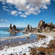 Mono lake — Stock Photo #7849512