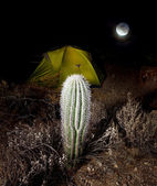 Tent in night — Stock Photo