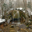 Falls in the winter forest - Stock Photo