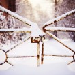 Closed frozen gate — Stock Photo