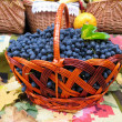 Stock Photo: Grapes in the basket. Grapevine over carpet and leaves